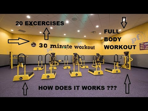 Planet Fitness 30 Min Express Circuit  Workout #planetfitness #30minsworkout #expresscircuit