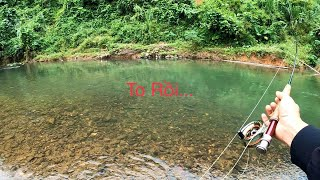 Câu Cá Suối Cuối Thu - Lẩu Cá Suối Rau Rừng