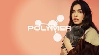 Dua Lipa - NEW RULES (Drum and Bass Remix) - Polymer