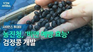 농진청, '비만 예방 효능' 검정콩 개발 / YTN 사…