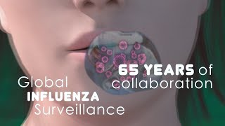 WHO: Global Influenza Surveillance, 65 Years of Collaboration