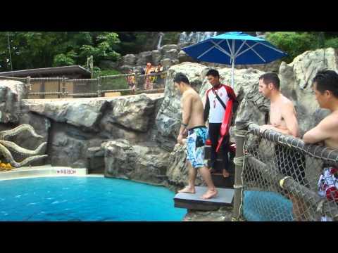 캐리비안베이 다이빙풀 - Diving pool in Caribbean Bay, Korea (1/4)