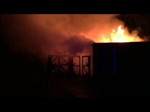 Over 70 firefights tackle blaze at London Zoo