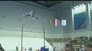 Владислав Поляшов Перекладина Финал - Чемпионат России 2017