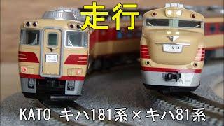 鉄道模型Nゲージカントレール走行 キハ81系×キハ181系