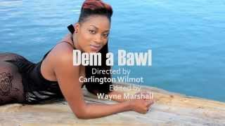 Tiana - Dem A Bawl [Official Music Video HD] July 2012