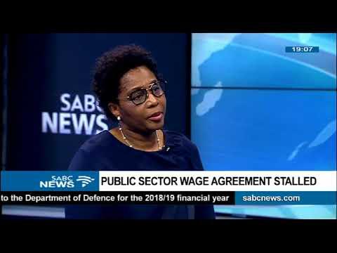 Ayanda Dlodlo On Public Sector Wage Agreement Youtube