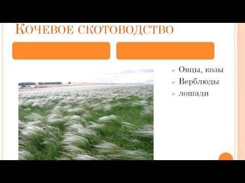 Презентация Занятия, культура и быт населения золотоордынских городов