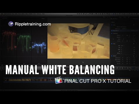 how to reset final cut pro