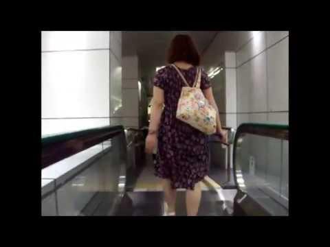 From Shinjuku Station  to the Tokyo Metropolitan  Government