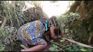 Itabuna: Mãe corta partes de corpo de bebê, queima e enterra debaixo de pé de jaca