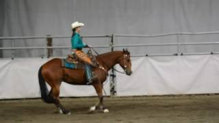 aqha ranch riding amateur sandra