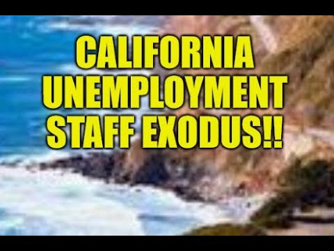 CALIFORNIA UNEMPLOYMENT EXODUS,  IRS SMELLS BLOOD, JOBLESS N