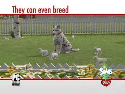 The Sims 2 Pets - Developer Walkthrough from YouTube · Duration:  8 minutes 6 seconds  · 82,000+ views · uploaded on 12/17/2008 · uploaded by Sims2SouthAfrica