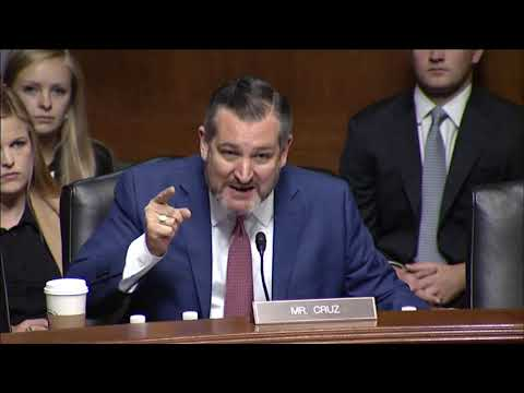 Watch: Cruz Gives Staunchest Defense of American Lives During Hearing on Sanctuary Cities