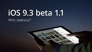 iOS 9.3 beta 1.1: обзор нововведений