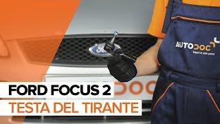 Manutenzione FORD TRANSIT Platform/Chassis (FM_ _, FN_ _) - video guida