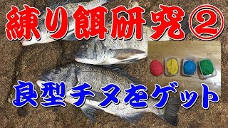 #20 練り餌研究 チヌ釣り用練り餌(第2回) thumbnail