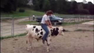 World Amazing Modern Sexy Girls Women Riding on Cows and Pigs Fun Epic Fail Top 10 Viral Videos