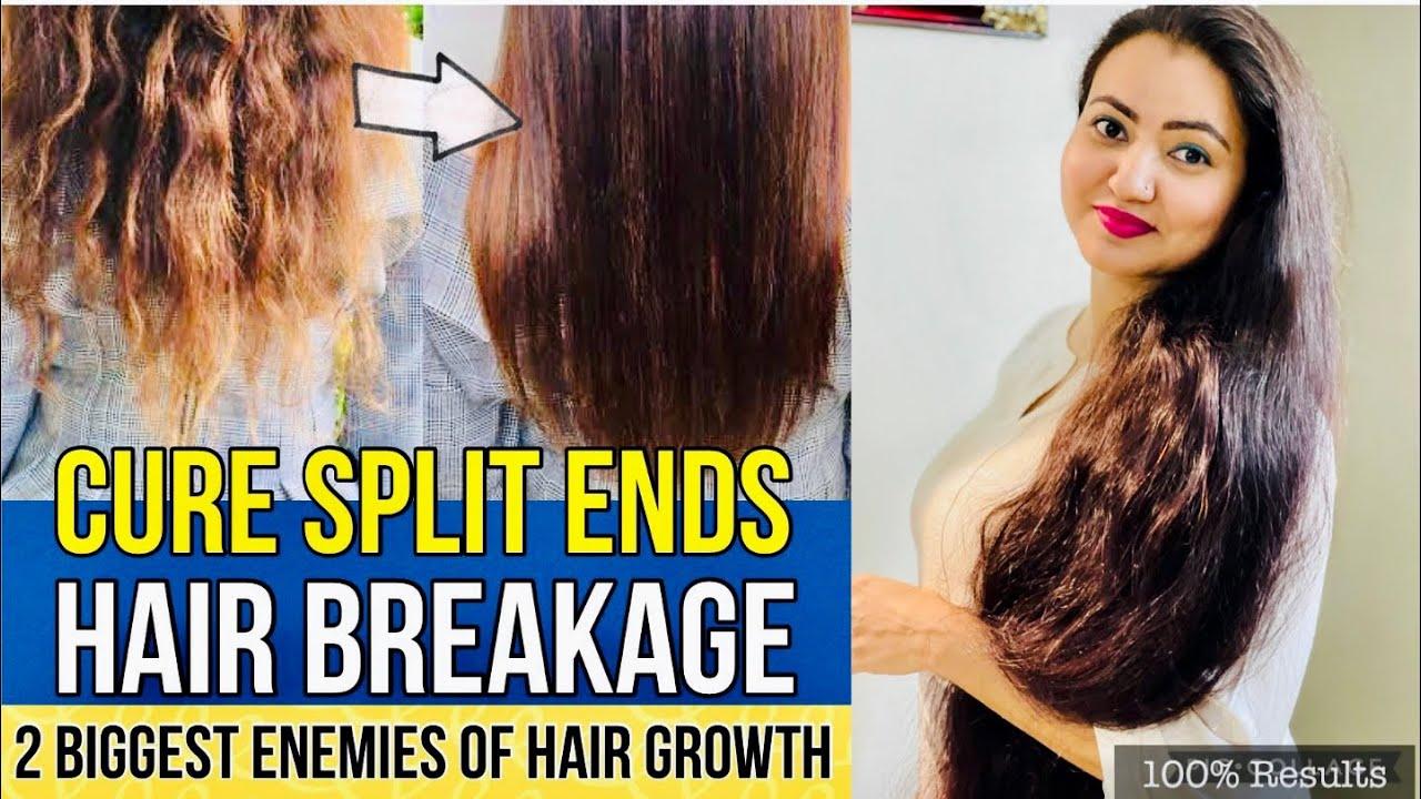 दो मुहें बाल Splits Ends की Problem को हमेशा के लिए खत्म करें | 100% Split Ends Treatment At Home