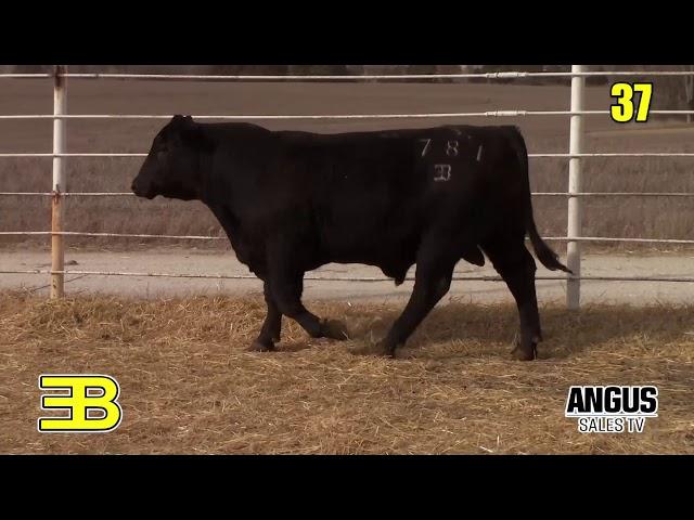 Benoit Angus Lot 37