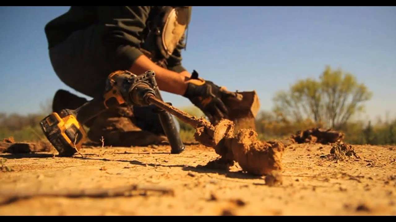 Step By Step Dirt Hole Set For Coyote Trapping The Management