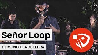 Señor Loop - El mono y la culebra (Video Oficial)