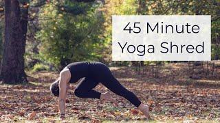 45 Minute Yoga Shred with Danina of Indigo Yoga