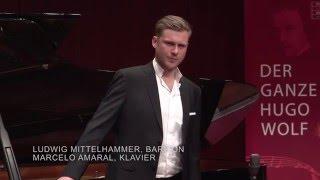 Hugo Wolf: Wie viele Zeit... - Ludwig Mittelhammer (Bariton) & Marcelo Amaral (Klavier), 12.03.2016