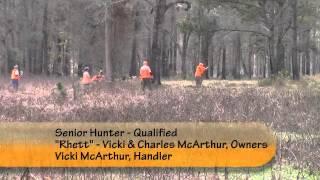 North Florida Gsp Club Hunt Test Video