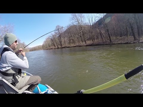 Fly Fishing the North Branch of the Potomac River