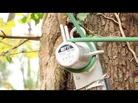Démontage d'arbre avec rétention - Groupe - Holtzinger - Haut Koenigsbourg 2017
