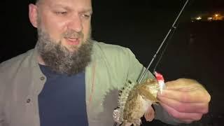 Морская рыбалка в Абхазии на форелевые приманки Скорпена и горбыль