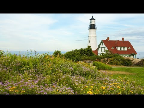 "Peaceful music, Relaxing music, Sleep Music, ""Maine Summer"" by Tim Janis"