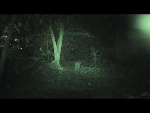Malaysian Ghost Research -  Mysterious Ghost Energy Manifestation