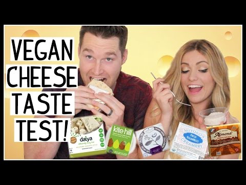 VEGAN CHEESE TASTE TEST! [DAY 24] Dani Lauren