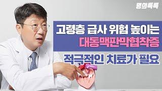 고령층 급사 위험 높이는 '대동맥판막협착증', 적극적인…