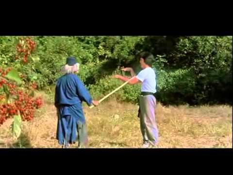 Jackie Chan La Serpiente A La Sombra Del Águila Pelicula Completa