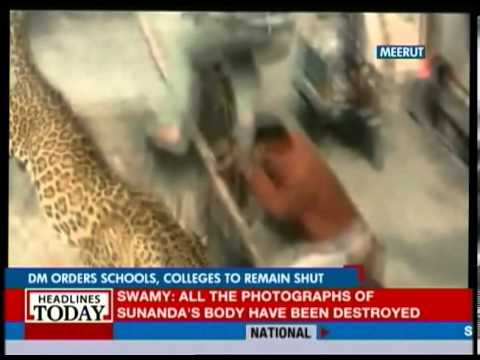 Meerut: Cops and wildlife experts out in teams to nab leopard