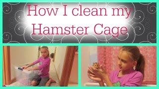 How I Clean My Hamster Cage
