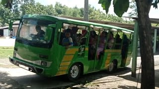 The Little Bus Tayo Odong Odong Wisata Yang Lucu Siap Gass Poll