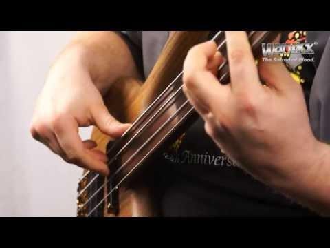 The Warwick Dolphin Pro I 4-String Fretless