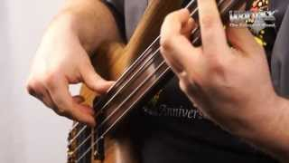The Warwick Dolphin Pro I 4-String Fretless