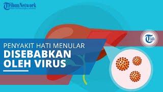 Pencegahan Penularan Hepatitis B dari Ibu ke Janin.