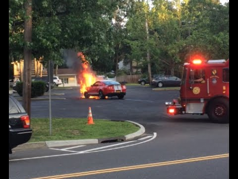 Mustang Catches Fire In Sound Beach, NY 11789