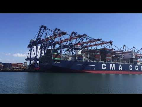 The Global Supply Chain: Shenzhen to Los Angeles