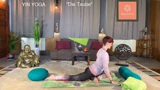 """Die Taube"" Yin Yoga"