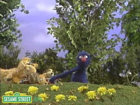 Sesame Street:Monster's Best Friend with Grover