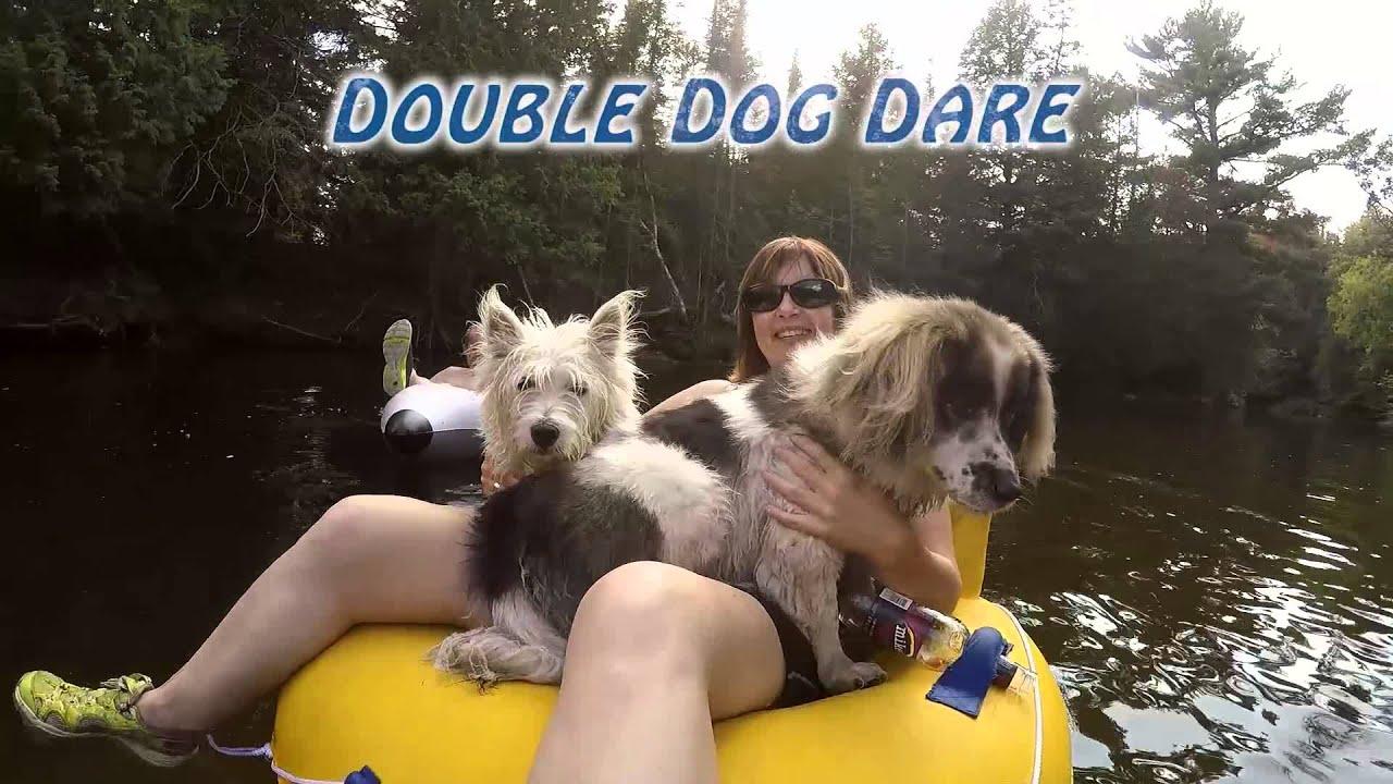 Free Dogs Ontario Minden