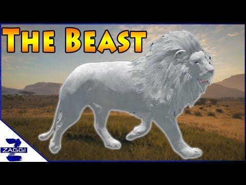 The White Beast Call of the Wild